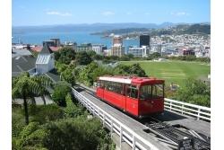 City Tour por Wellington