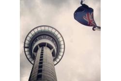 Auckland - City Tour de 1/2 día
